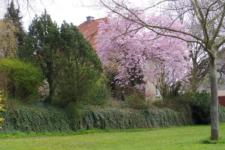 So langsam kommt das Frühjahr